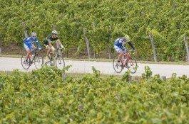 Met fiets door Istrië