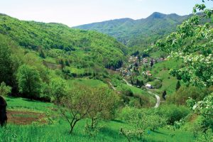 Continental Croatia spring II