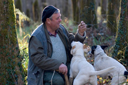 Hunting for truffles in Buzet