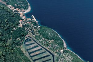 Mljet fields