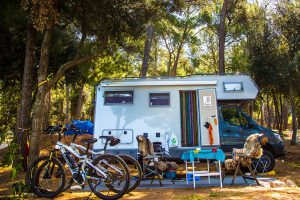 Camping Arena Indije pitches | AdriaCamps