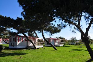 Camping Medulin mobile homes exterior