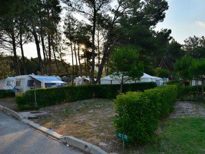 Kamp Pila: parcele | AdriaCamps