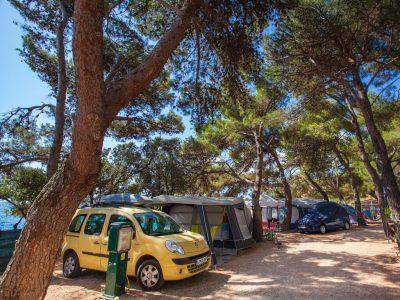 Campeggio Rapoca traccia in una pineta