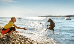 Kamp Lanterna Happy Dog Beach | AdriaCamps