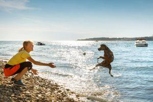 Happy Dog Luxury Mare - Lanterna Premium Camping Resort