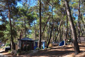 Standard B - Campingplatz Arena Tašalera