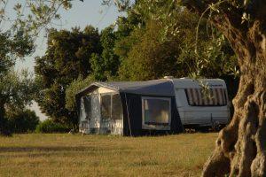 Camping place - Campeggio Naturista Koversada