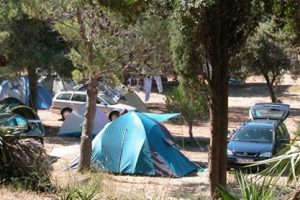 Standard - Campsite Brioni