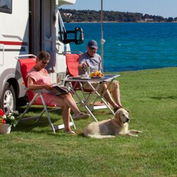 Pet-friendly campsites