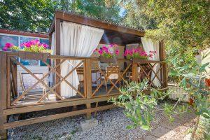 Standard - Campsite Tina
