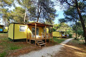 Vanga Premium - Kamp Pineta