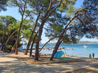 Campsite Ljutic beach and pine forest | AdriaCamps