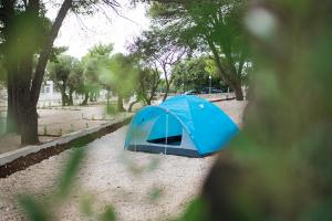 Superior - Campsite Medora Orbis
