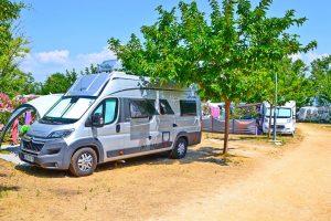 Standard - San Marino Camping Resort